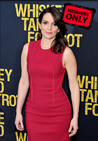 Celebrity Photo: Tina Fey 2426x3488   1.9 mb Viewed 1 time @BestEyeCandy.com Added 52 days ago