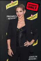 Celebrity Photo: Elsa Pataky 2835x4252   3.5 mb Viewed 5 times @BestEyeCandy.com Added 873 days ago