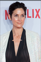 Celebrity Photo: Carrie-Anne Moss 1024x1535   269 kb Viewed 101 times @BestEyeCandy.com Added 808 days ago
