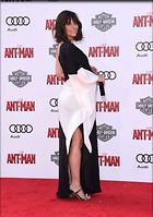 Celebrity Photo: Evangeline Lilly 3065x4354   1,071 kb Viewed 36 times @BestEyeCandy.com Added 940 days ago