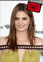 Celebrity Photo: Stana Katic 3114x4506   1.6 mb Viewed 3 times @BestEyeCandy.com Added 429 days ago