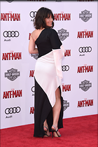 Celebrity Photo: Evangeline Lilly 2982x4474   993 kb Viewed 129 times @BestEyeCandy.com Added 934 days ago