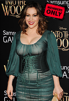 Celebrity Photo: Alyssa Milano 2400x3501   2.1 mb Viewed 13 times @BestEyeCandy.com Added 997 days ago
