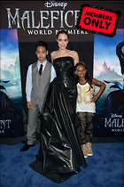 Celebrity Photo: Angelina Jolie 3680x5520   4.3 mb Viewed 6 times @BestEyeCandy.com Added 837 days ago