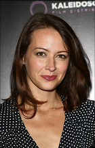 Celebrity Photo: Amy Acker 1947x3000   967 kb Viewed 80 times @BestEyeCandy.com Added 682 days ago
