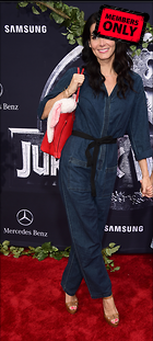 Celebrity Photo: Angie Harmon 1528x3396   2.0 mb Viewed 10 times @BestEyeCandy.com Added 983 days ago