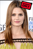 Celebrity Photo: Stana Katic 2217x3293   1.5 mb Viewed 7 times @BestEyeCandy.com Added 332 days ago