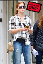 Celebrity Photo: Amy Adams 1629x2443   2.9 mb Viewed 8 times @BestEyeCandy.com Added 3 years ago