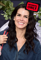 Celebrity Photo: Angie Harmon 2338x3366   5.3 mb Viewed 12 times @BestEyeCandy.com Added 768 days ago