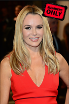 Celebrity Photo: Amanda Holden 3001x4510   2.5 mb Viewed 7 times @BestEyeCandy.com Added 547 days ago