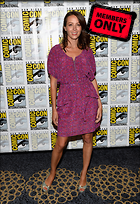 Celebrity Photo: Amy Acker 2838x4126   3.3 mb Viewed 11 times @BestEyeCandy.com Added 627 days ago