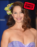 Celebrity Photo: Ashley Judd 2333x3000   1.8 mb Viewed 3 times @BestEyeCandy.com Added 1093 days ago