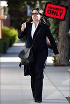 Celebrity Photo: Julia Louis Dreyfus 3333x4953   1.4 mb Viewed 0 times @BestEyeCandy.com Added 259 days ago