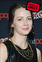 Celebrity Photo: Amy Acker 2038x3000   1.4 mb Viewed 7 times @BestEyeCandy.com Added 745 days ago
