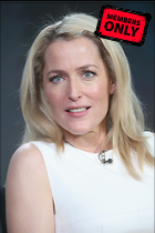 Celebrity Photo: Gillian Anderson 3456x5184   3.1 mb Viewed 15 times @BestEyeCandy.com Added 865 days ago