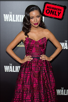 Celebrity Photo: Christian Serratos 2000x3000   4.0 mb Viewed 1 time @BestEyeCandy.com Added 687 days ago