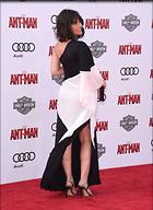 Celebrity Photo: Evangeline Lilly 3280x4498   1,106 kb Viewed 99 times @BestEyeCandy.com Added 934 days ago