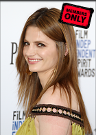 Celebrity Photo: Stana Katic 3240x4530   1.6 mb Viewed 4 times @BestEyeCandy.com Added 332 days ago
