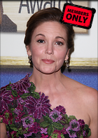 Celebrity Photo: Diane Lane 3402x4788   2.5 mb Viewed 8 times @BestEyeCandy.com Added 758 days ago