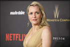 Celebrity Photo: Gillian Anderson 3500x2374   772 kb Viewed 433 times @BestEyeCandy.com Added 584 days ago