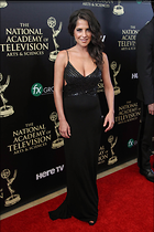 Celebrity Photo: Kelly Monaco 1040x1560   159 kb Viewed 237 times @BestEyeCandy.com Added 1040 days ago