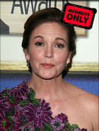 Celebrity Photo: Diane Lane 3162x4212   1.9 mb Viewed 6 times @BestEyeCandy.com Added 758 days ago