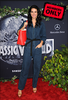 Celebrity Photo: Angie Harmon 2850x4144   2.2 mb Viewed 6 times @BestEyeCandy.com Added 983 days ago
