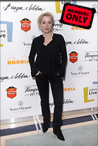 Celebrity Photo: Gillian Anderson 2785x4158   1.9 mb Viewed 5 times @BestEyeCandy.com Added 796 days ago