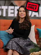 Celebrity Photo: Linda Cardellini 2254x3000   1.4 mb Viewed 0 times @BestEyeCandy.com Added 136 days ago