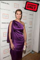 Celebrity Photo: Brooke Shields 2336x3500   2.7 mb Viewed 9 times @BestEyeCandy.com Added 721 days ago