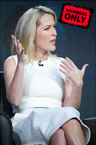 Celebrity Photo: Gillian Anderson 2333x3500   4.0 mb Viewed 6 times @BestEyeCandy.com Added 596 days ago