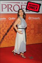 Celebrity Photo: Salma Hayek 2329x3500   1.4 mb Viewed 6 times @BestEyeCandy.com Added 62 days ago
