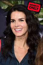 Celebrity Photo: Angie Harmon 2456x3696   5.7 mb Viewed 7 times @BestEyeCandy.com Added 620 days ago