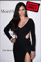 Celebrity Photo: Adriana Lima 2950x4432   3.0 mb Viewed 27 times @BestEyeCandy.com Added 1046 days ago
