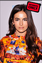 Celebrity Photo: Camilla Belle 1996x3000   1.3 mb Viewed 1 time @BestEyeCandy.com Added 25 days ago