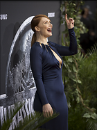 Celebrity Photo: Bryce Dallas Howard 2626x3500   1.2 mb Viewed 121 times @BestEyeCandy.com Added 342 days ago