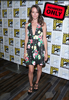 Celebrity Photo: Amy Acker 2128x3080   2.4 mb Viewed 9 times @BestEyeCandy.com Added 966 days ago