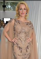 Celebrity Photo: Gillian Anderson 1023x1458   469 kb Viewed 354 times @BestEyeCandy.com Added 797 days ago
