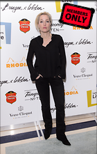 Celebrity Photo: Gillian Anderson 2484x3913   1.7 mb Viewed 4 times @BestEyeCandy.com Added 796 days ago