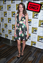 Celebrity Photo: Amy Acker 2136x3136   2.5 mb Viewed 9 times @BestEyeCandy.com Added 755 days ago