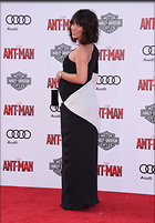 Celebrity Photo: Evangeline Lilly 3125x4486   1,006 kb Viewed 29 times @BestEyeCandy.com Added 940 days ago