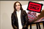 Celebrity Photo: Ellen Page 4528x3017   1.5 mb Viewed 2 times @BestEyeCandy.com Added 898 days ago