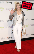 Celebrity Photo: Bo Derek 3000x4783   1.7 mb Viewed 2 times @BestEyeCandy.com Added 70 days ago