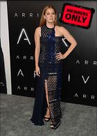 Celebrity Photo: Amy Adams 3000x4173   1.8 mb Viewed 4 times @BestEyeCandy.com Added 65 days ago