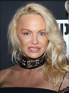 Celebrity Photo: Pamela Anderson 1200x1610   477 kb Viewed 151 times @BestEyeCandy.com Added 15 days ago