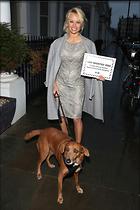 Celebrity Photo: Pamela Anderson 1200x1800   288 kb Viewed 18 times @BestEyeCandy.com Added 30 days ago