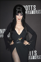 Celebrity Photo: Cassandra Peterson 1470x2209   258 kb Viewed 356 times @BestEyeCandy.com Added 815 days ago