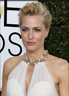 Celebrity Photo: Gillian Anderson 1200x1680   348 kb Viewed 176 times @BestEyeCandy.com Added 317 days ago