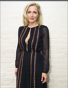Celebrity Photo: Gillian Anderson 2202x2846   384 kb Viewed 442 times @BestEyeCandy.com Added 518 days ago