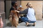 Celebrity Photo: Amanda Seyfried 1470x980   125 kb Viewed 23 times @BestEyeCandy.com Added 181 days ago
